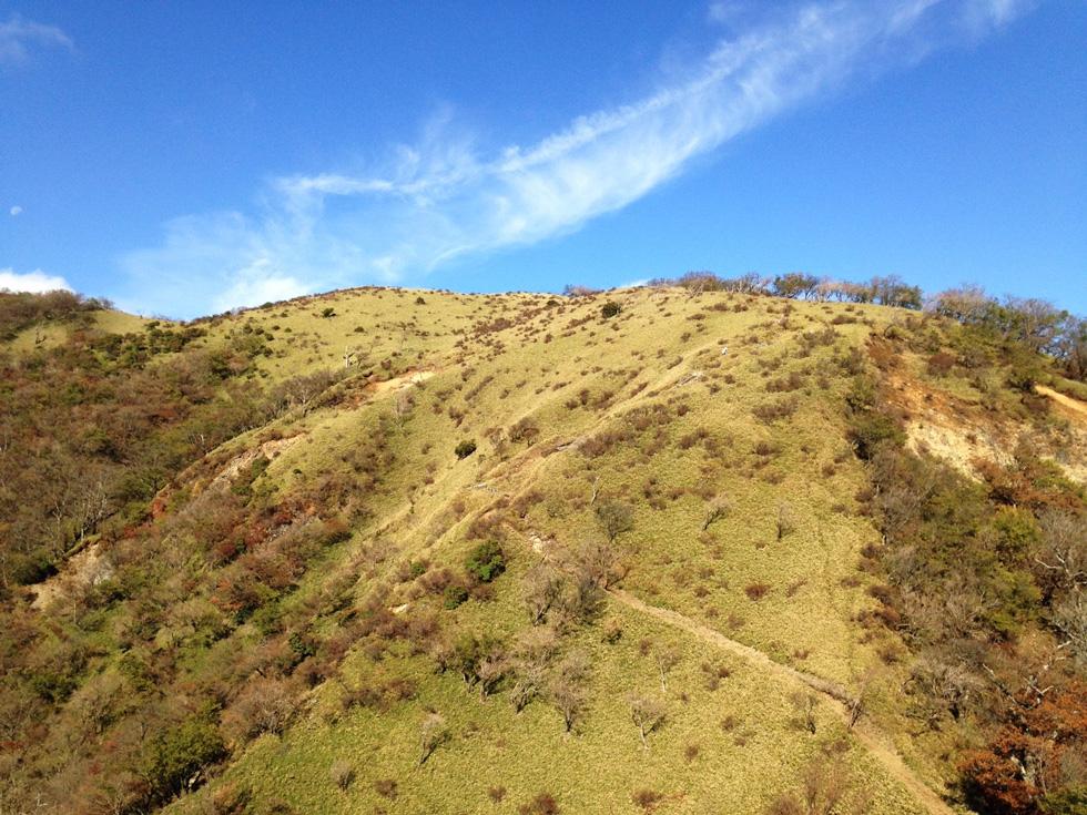 丹沢山から蛭ヶ岳の稜線