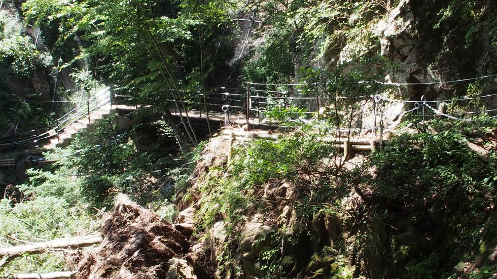 大山の整備された登山道