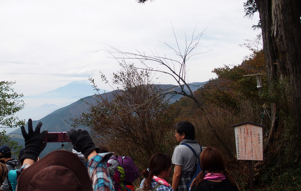 大山 富士見台