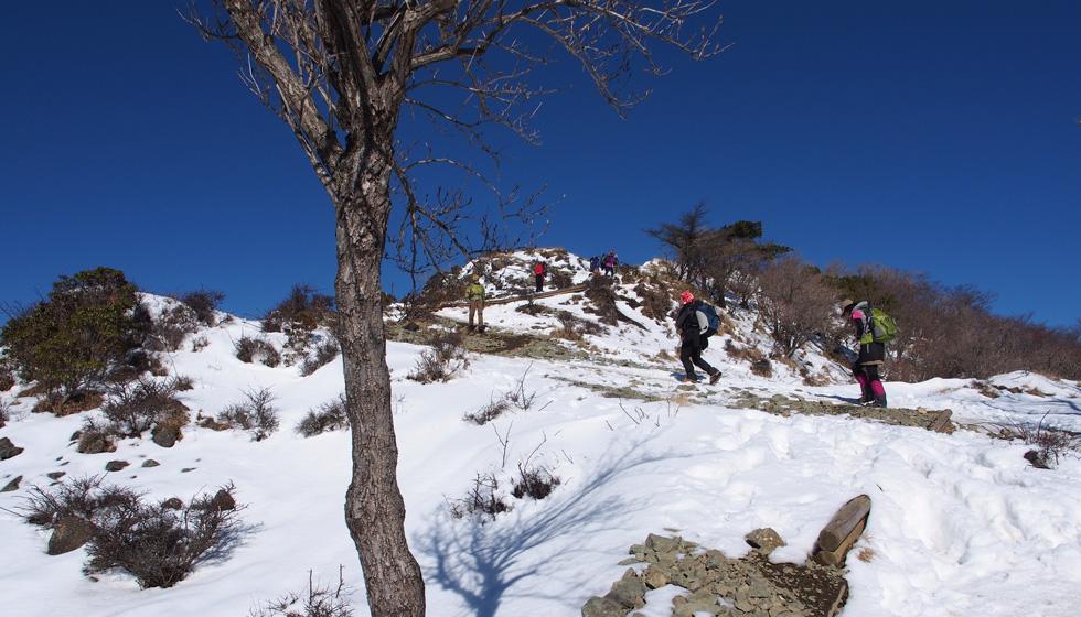 雪の塔ノ岳 金冷シ、頂上付近