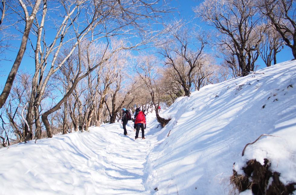 雪の塔ノ岳 頂上付近