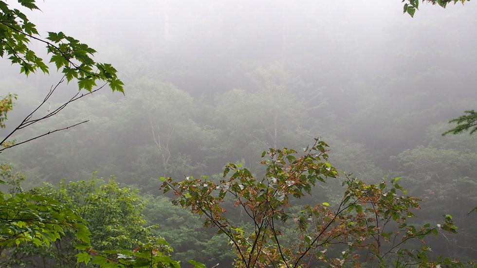 常念岳 曇り雨