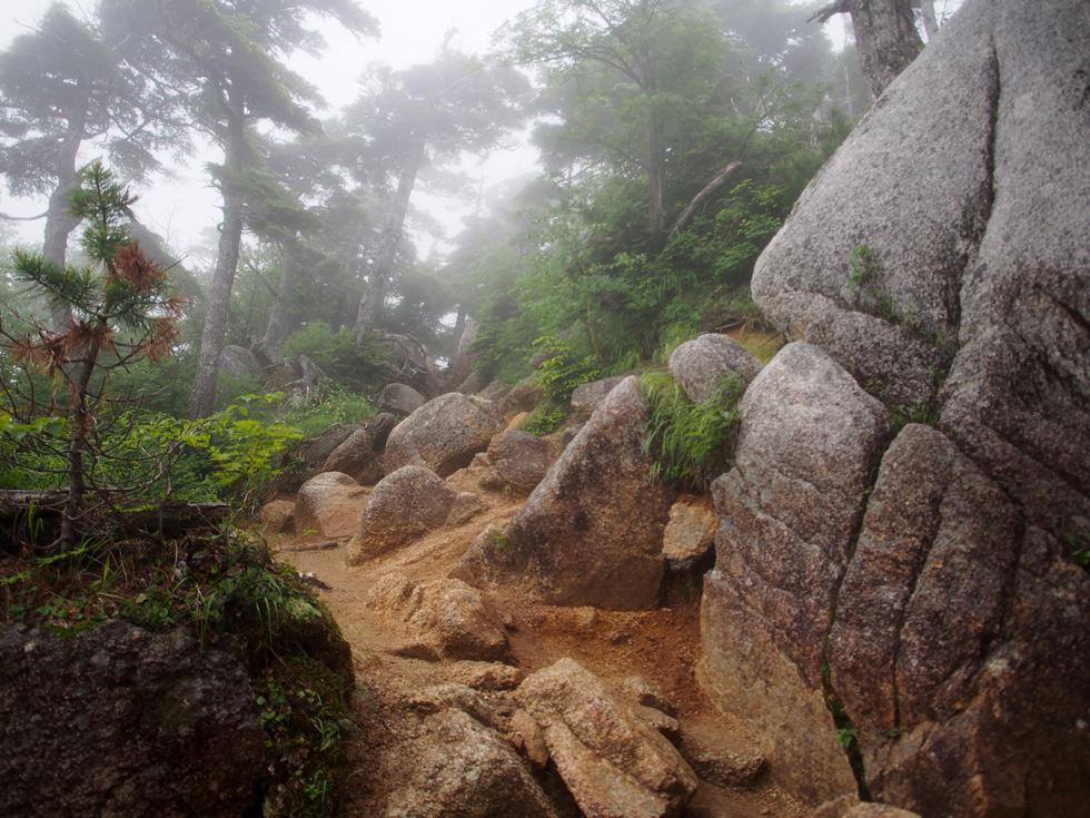 燕岳 登山道