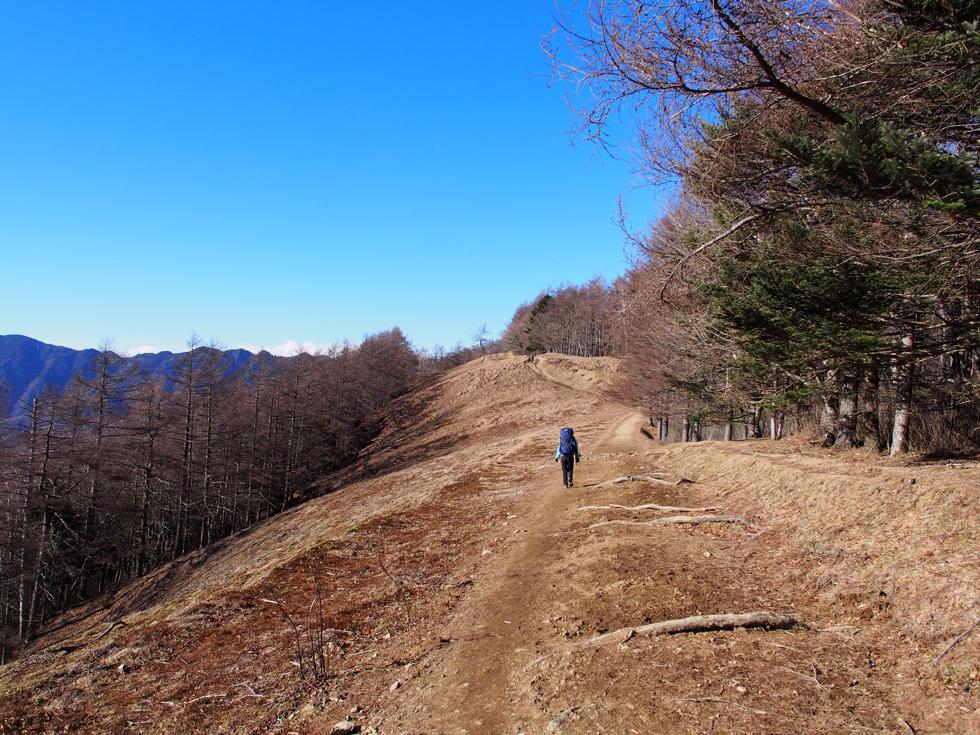 雲取山登山道の草原の尾根