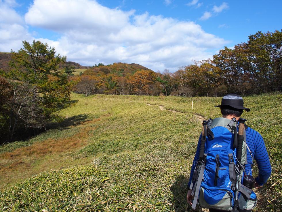 ハイキングコースの草原を歩く