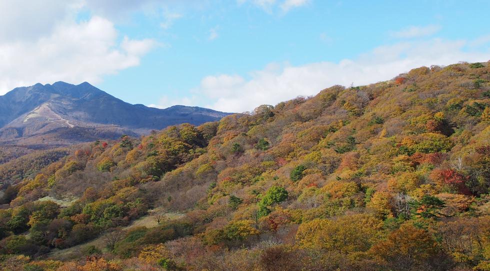 霜降高原の紅葉