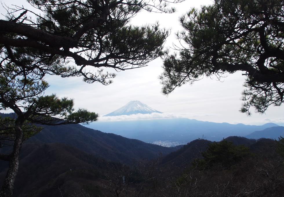 清八山から見る富士山