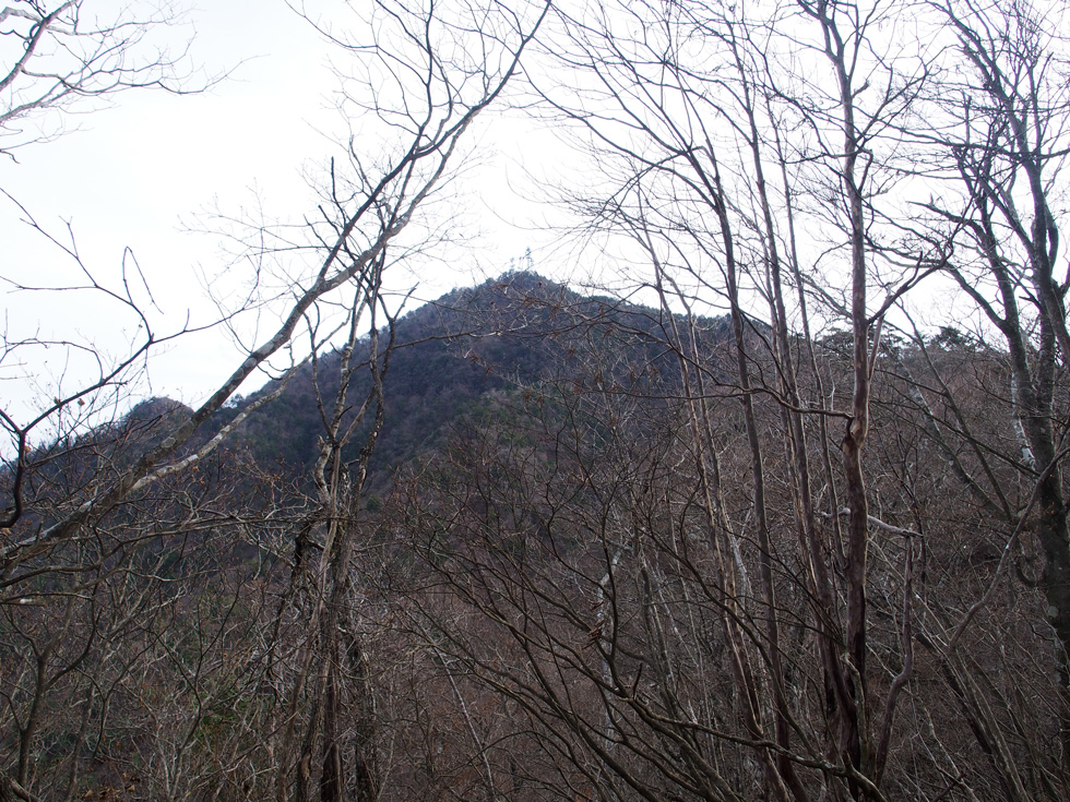 茶臼山付近から見る三ツ峠