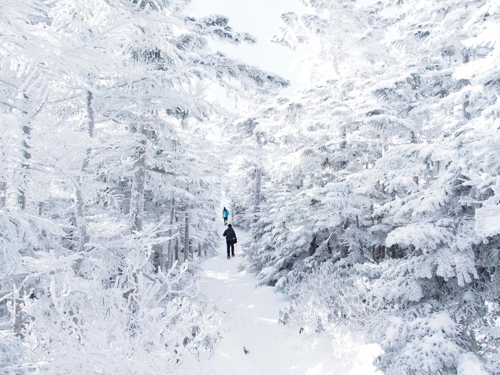 北横岳 白銀の世界