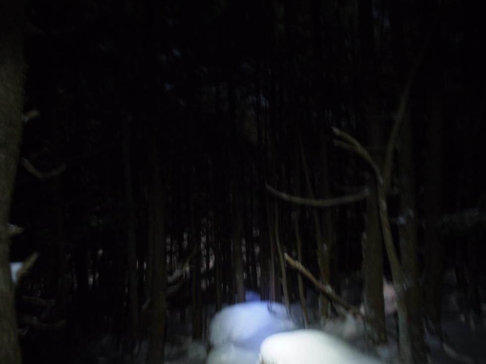 双子池近くで回りは真っ暗