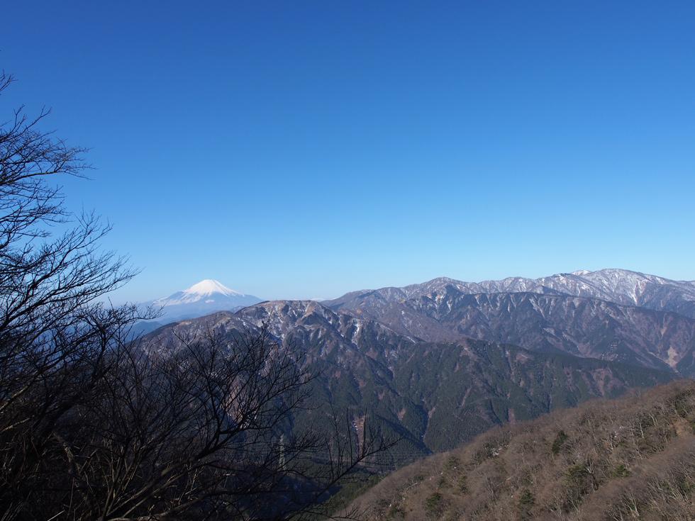 大山 イタツミ尾根から富士山を見る
