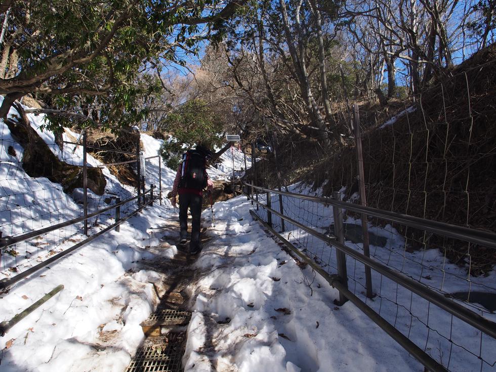 丹沢大山の雪