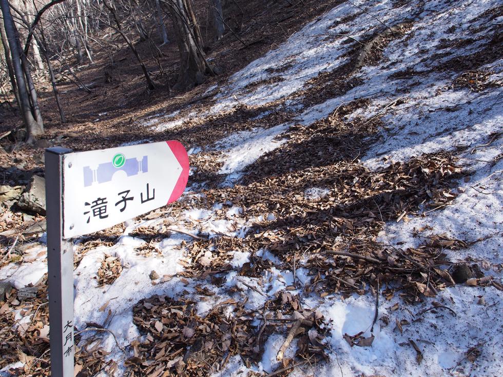 滝子山すみ沢