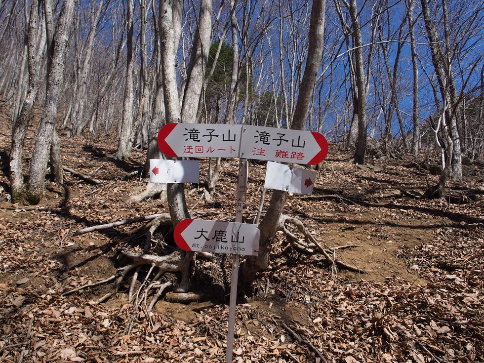 滝子山 難路と迂回ルート