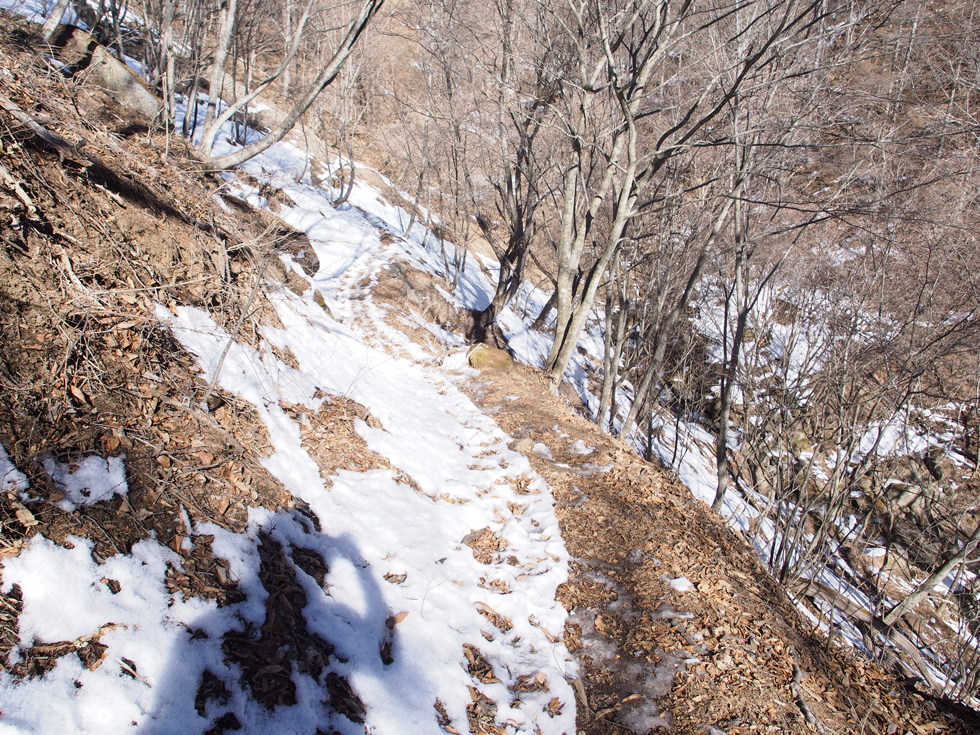 滝子山の雪道