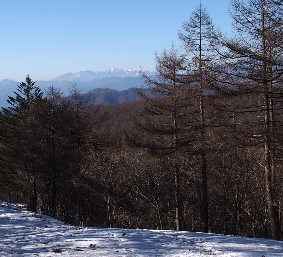 滝子山を下山 八ヶ岳連峰