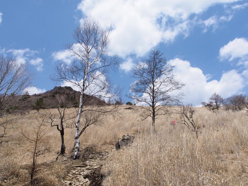 乾徳山 扇原に向けて登る