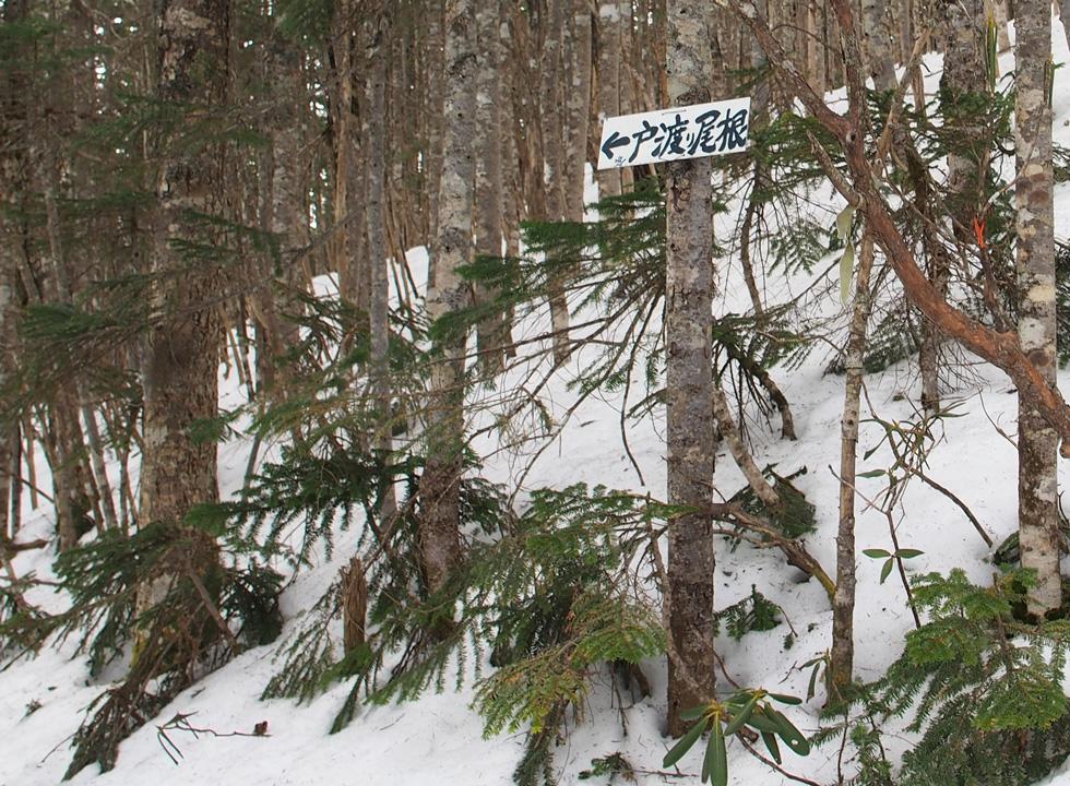 戸渡尾根の標識