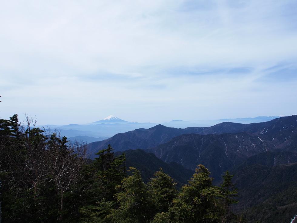 甲武信ヶ岳山頂から見る富士山