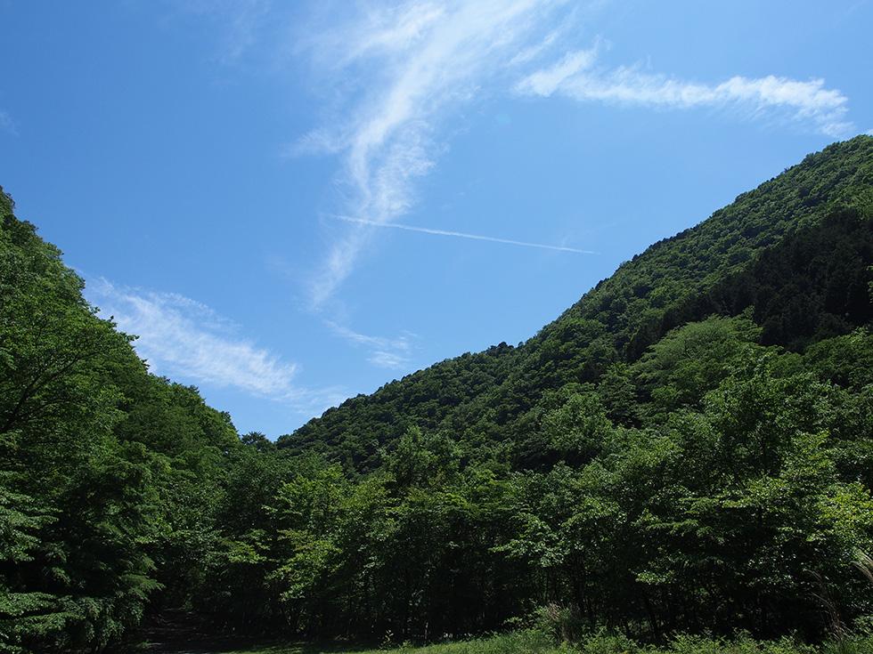 鍋割山 飛行雲