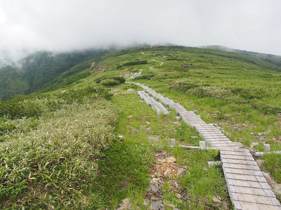 太郎兵衛平の木道を歩く