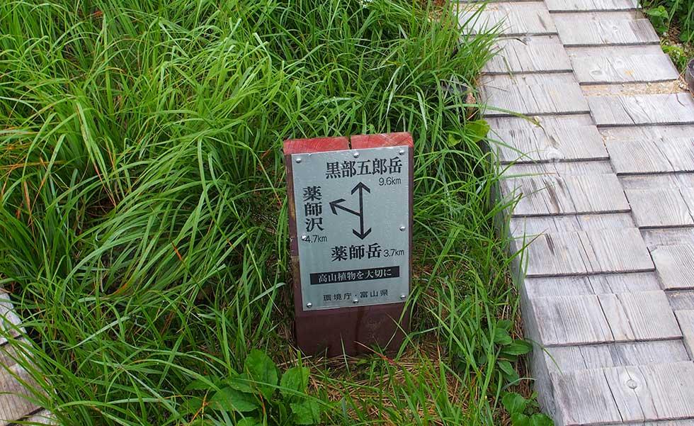 太郎平小屋すぐ側の分岐