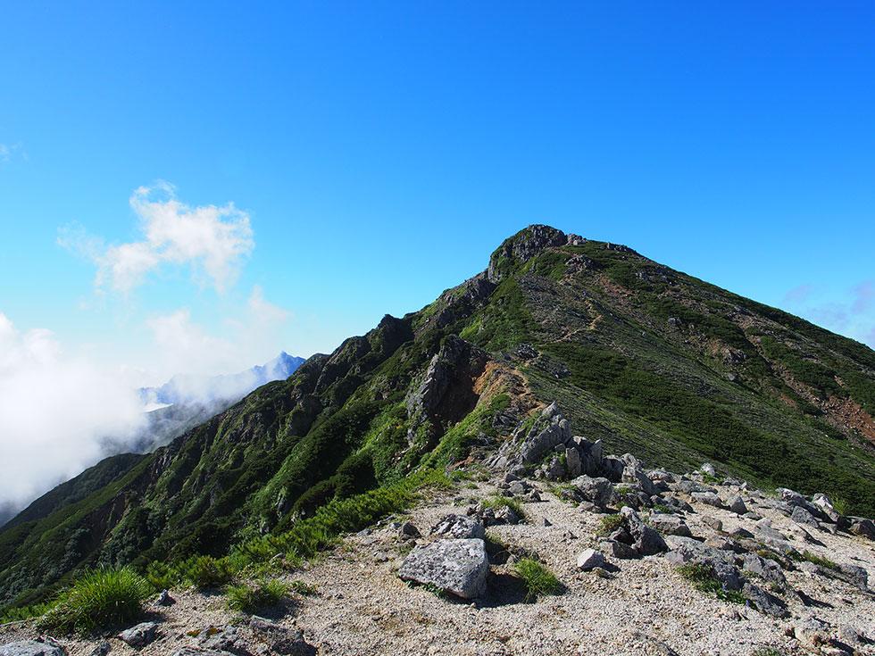 ワリモ岳への尾根道