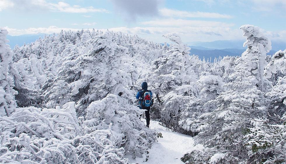 冬の北横岳を登る