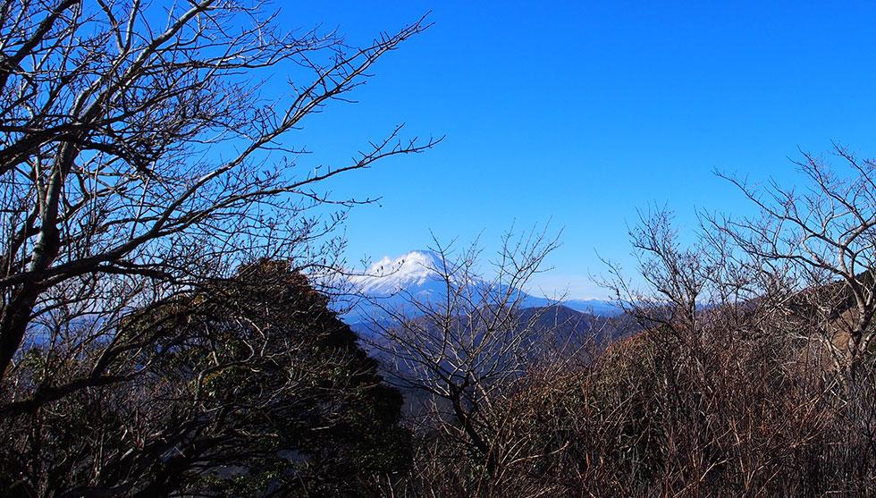 丹沢 二ノ塔から見る富士山