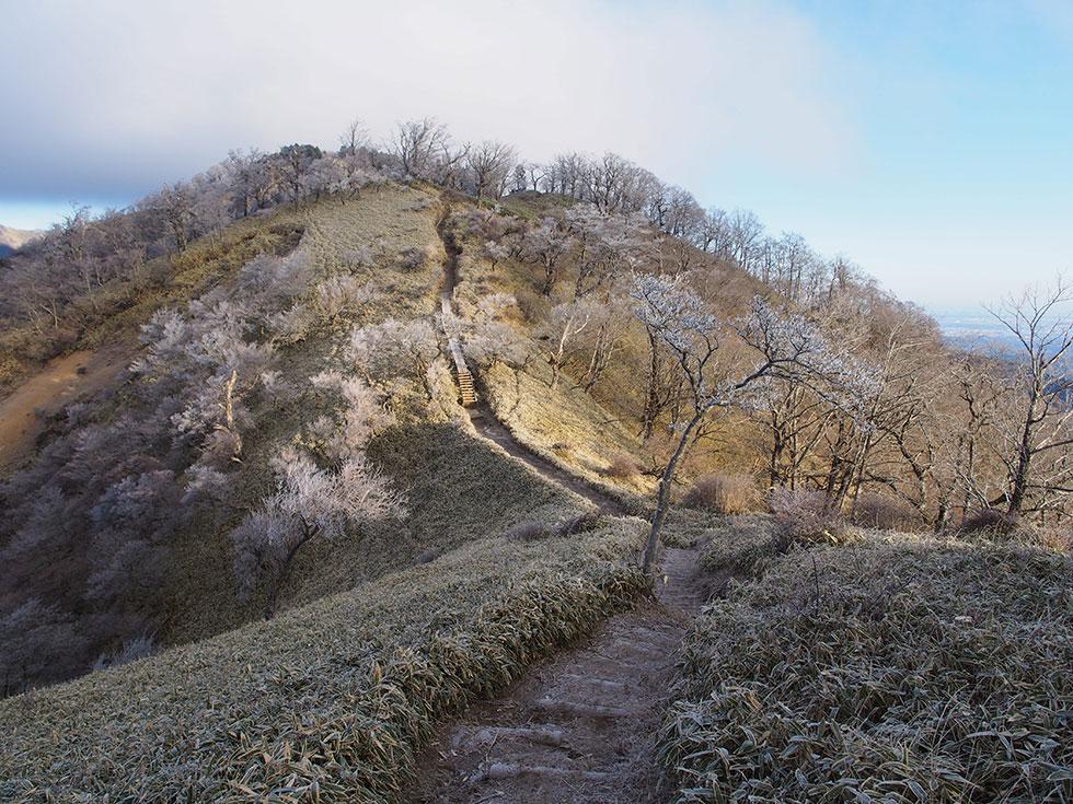 塔ノ岳から丹沢山へ向かう