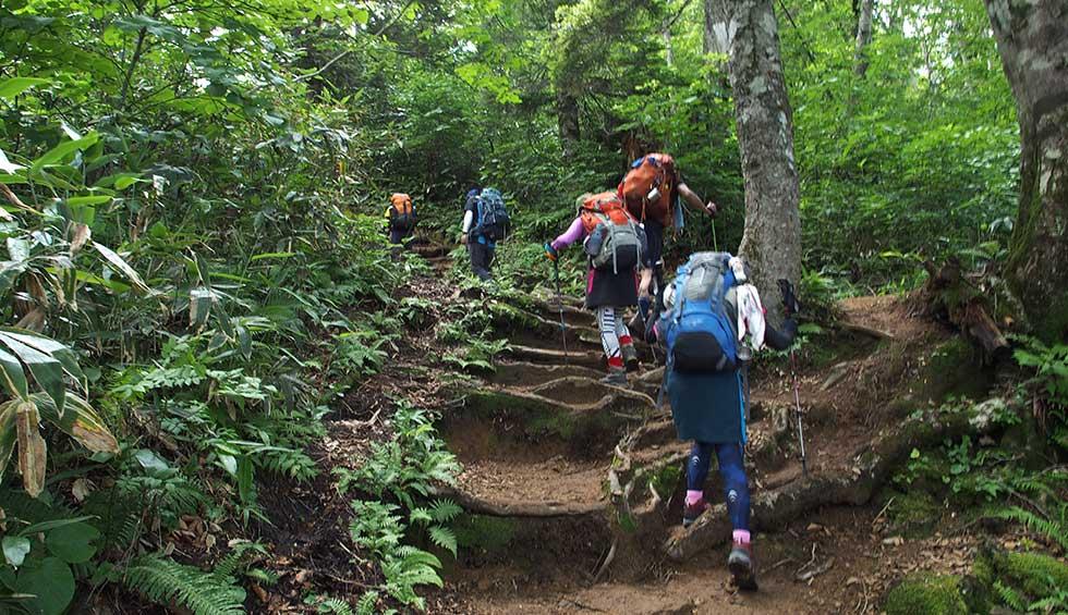 登山の歩き方のコツ - 疲れにくい歩き方