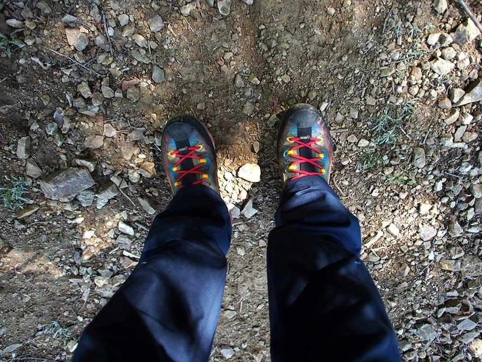 西山沢檜洞丸