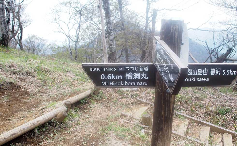 檜洞丸 石棚山稜分岐