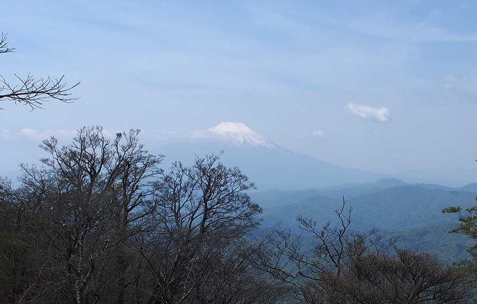 檜洞丸から見る富士山