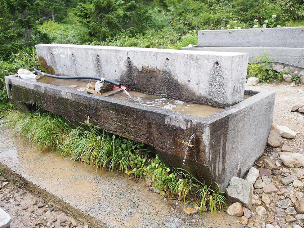 薬師沢キャンプ場の水場
