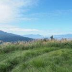 矢倉岳で久しぶりに日帰り登山をしてきた